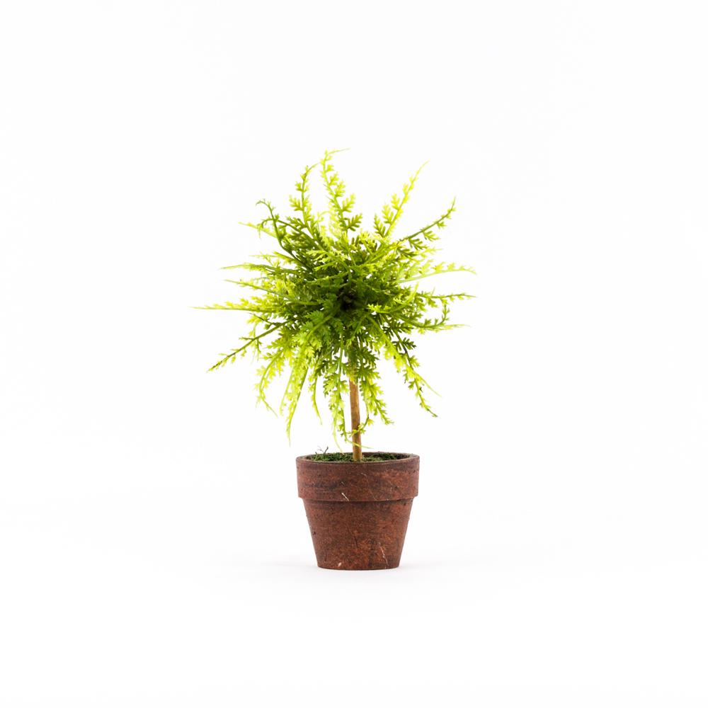 mini fern tree: tiny artificial fern topiary potted plant - platt