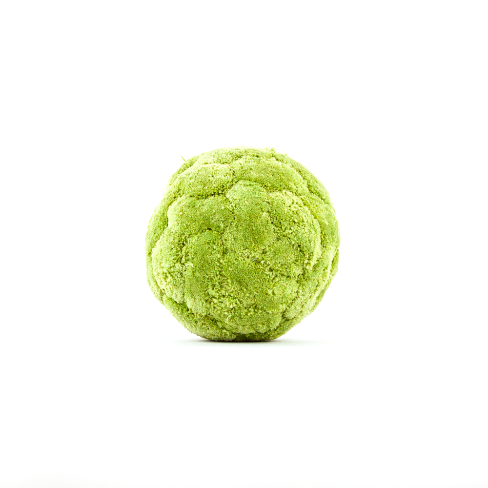 Large Moss Sphere Decorative Green Moss Orb Is A Great Decor